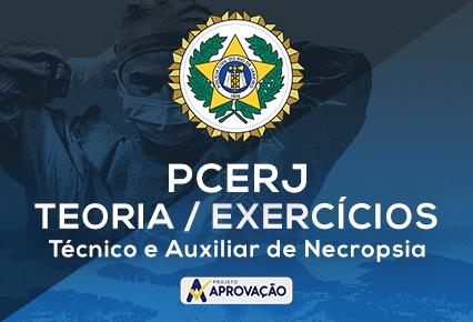 PCERJ - Técnico e Auxiliar de Necropsia -Turma de Elite - Exercícios + Teoria Direto ao Ponto
